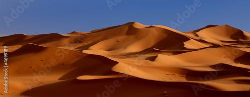 Slika na platnu crepuscule du desert
