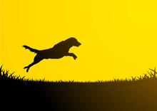 Animals Silhouette - Jumping D...