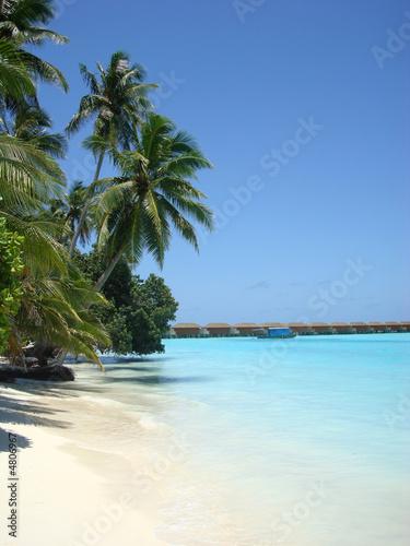 Foto-Leinwand - Malediven Traumstrand