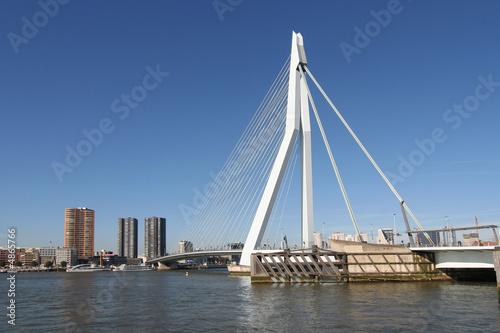 Foto auf Acrylglas Schwan Rotterdam Erasmusbridge