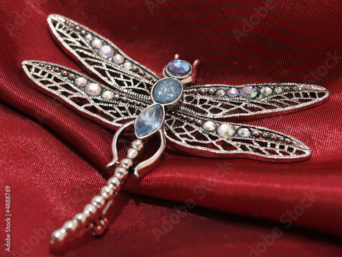 Tableau sur Toile dragonfly jewelry