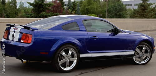 Photo  Mustang