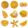 Collection of oranges isolated on white background