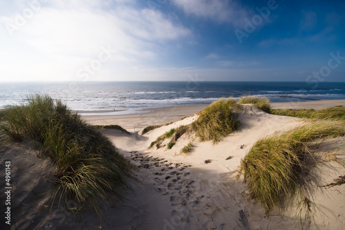 Canvas Print dunes and ocean