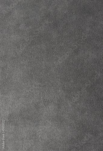grey alcantara Canvas Print
