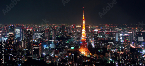 Photo sur Toile Tokyo Tokyo view by night