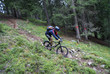 MTB Downhill No. 3