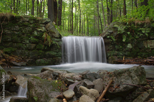 Wall Murals Waterfalls waterfall in the forest
