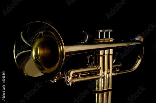 Fotografia gold trumpet in night