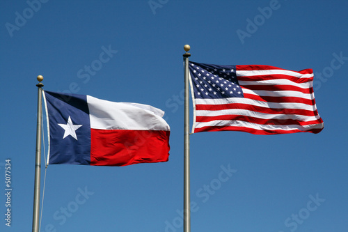Poster Texas Texas and US Flag