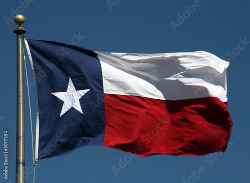 In de dag Texas Texas Flag
