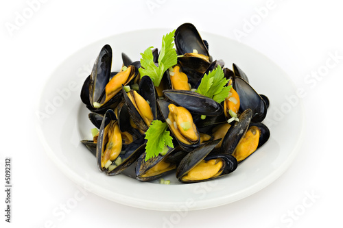 Moules Canvas Print