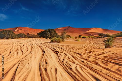 pustynia-namib