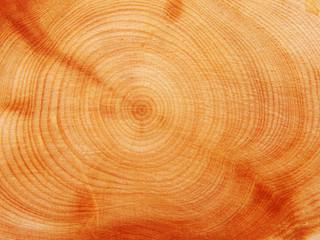 Fototapetawooden texture