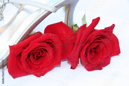 Photo  shoes for a special occasion,