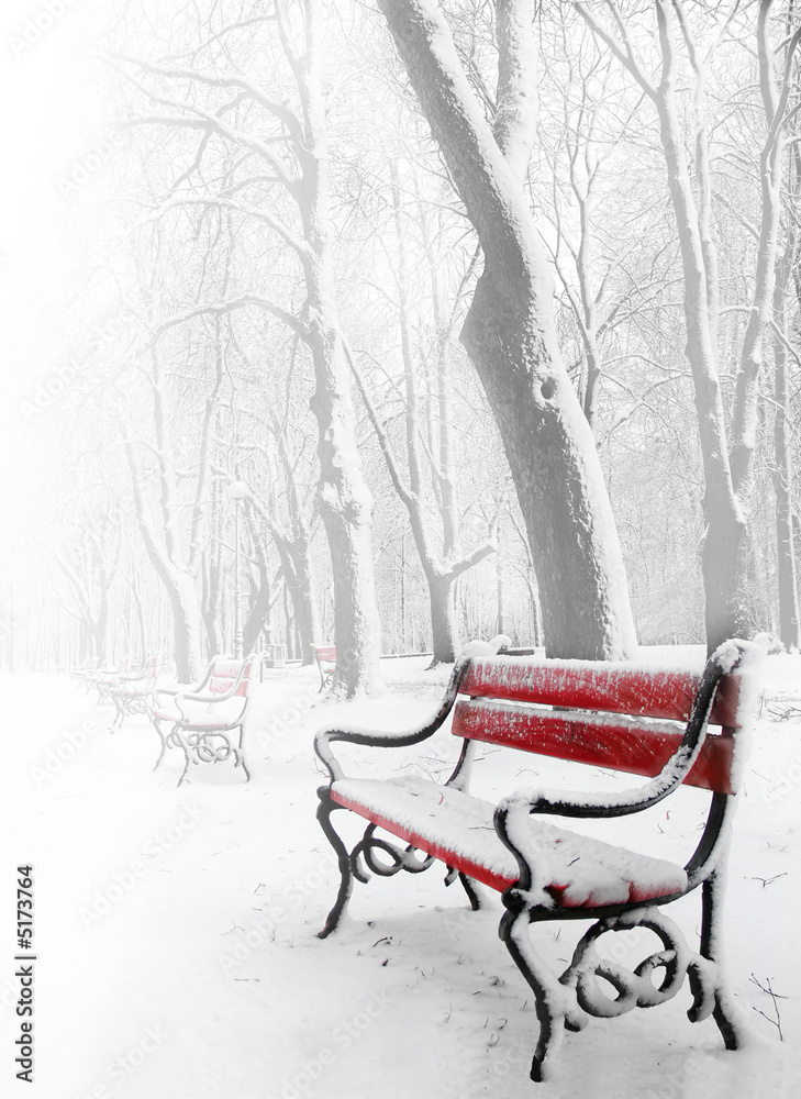 Fototapeta Red benches in the fog in winter