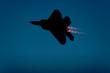 Leinwandbild Motiv F-22 Raptor fighter jet silhouette