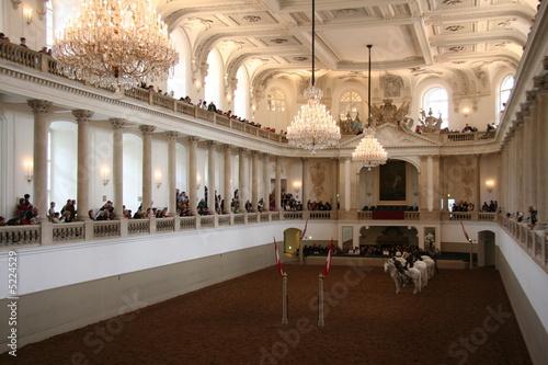 Montage in der Fensternische Wien Spanische Hofreitschule, Wien