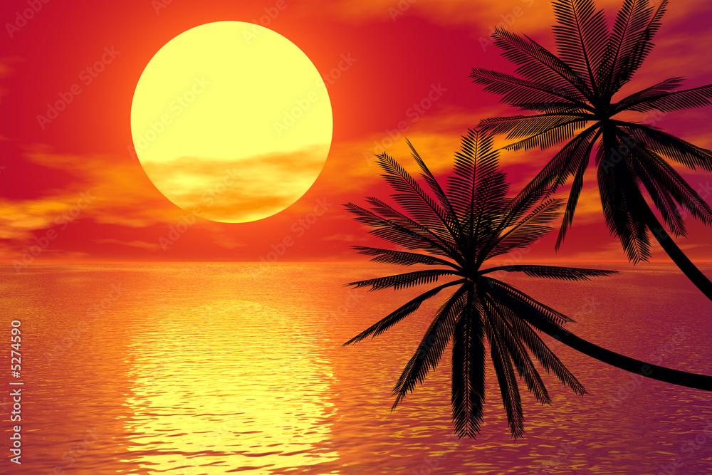 Fototapeta red sunset and palm