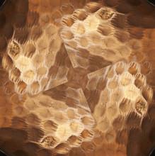 Macro Close-up Pattern Of Hamm...