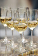 Glasses of white wine on the table