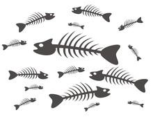 Black And White Fish Skeletons...