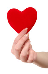 Red heart in female hands on a white background
