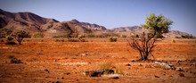 Outback Flinders Ranges South ...