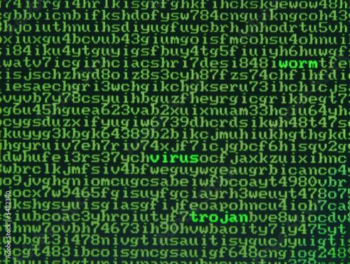 Photo Screen of alphanumerics with emphasis on virus, worm, trojan..