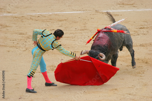 Foto op Aluminium Stierenvechten photo taken during corrida in madrid las ventas