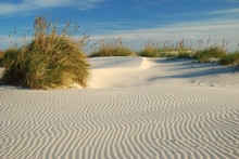 The Wind Has Created Gentle Ripples In The Sand.