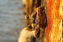 Rusted Nut And Bolt On A Weath...