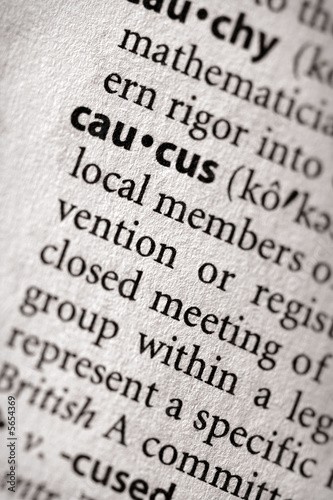 "Fotografia, Obraz ""caucus"". Many more word photos for you in my portfolio...."