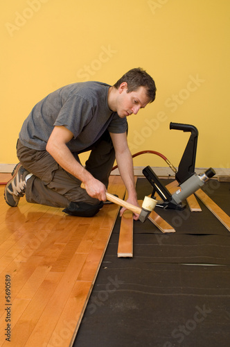 Man Installing Tongue And Groove Hardwood Floor Buy This Stock