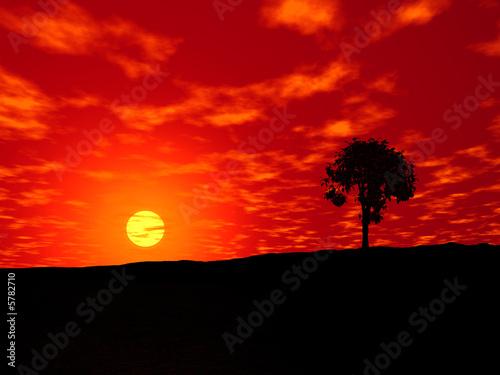 Cadres-photo bureau Brique Coucher soleil africain