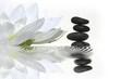 canvas print picture vibrations zen