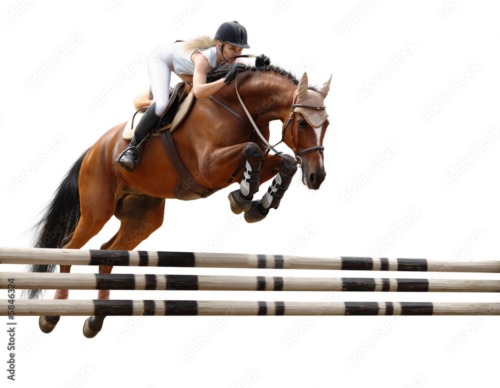 Fototapeta show jumping /stylized by oil painting/ - isolated on white