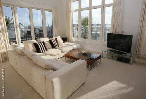 Valokuva  Modern furnished living room with plasma TV