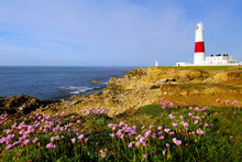 Portland Bill Lighthouse With ...