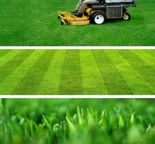 Papiers peints Vert lawn mowing