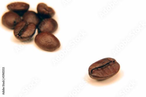 Keuken foto achterwand Koffiebonen Bean Alone