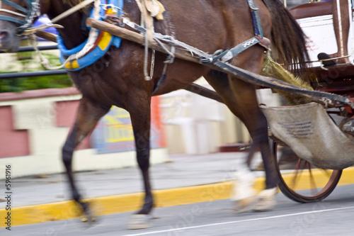 Deurstickers Stierenvechten Horse carriage fast moving