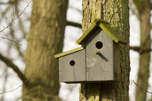 Double Wooden Birdhouse Ready As A Living