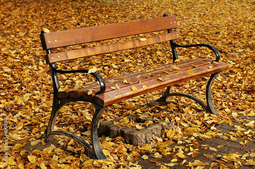 Wall Murals Cemetery bench in autumn