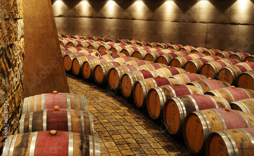 Wine Cellar Wallpaper Mural
