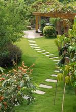 A Stone Walkway Winding Its Way Through A Tranquil Garden