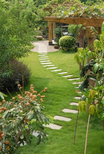 Fotobehang Tuin A stone walkway winding its way through a tranquil garden
