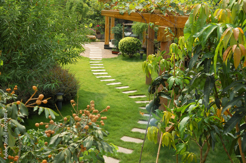 Papiers peints Jardin A stone walkway winding its way through a tranquil garden