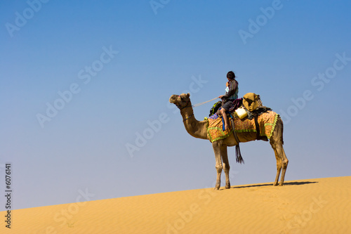 Fotografering  Riding a camel on a sand dune - Thar desert, Rajasthan, India