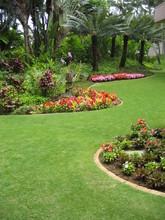 Hawaii Garden